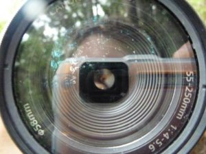 Looking through a lens_photobucket